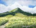 Favorite Mountain
