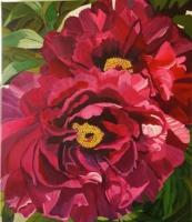 Succulents by Mary McCrea